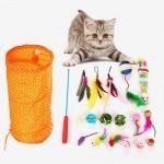 카샤카샤 고양이 낚시대 종합선물세트 [사은품증정]